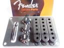 Fender Stratocaster Accessory Kit Black 0991363000